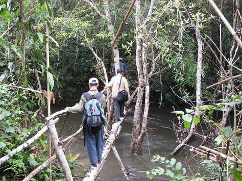 Nature reserve near Vientianne, Laos, 2006.