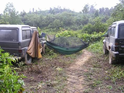 My home in the jungle. Rimbang Baling Nature Reserve, Riau, Sumatra, Indonesia. 2006