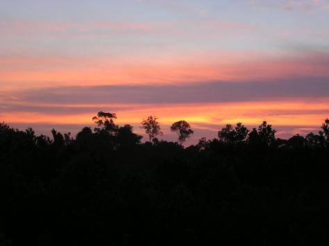 Sunset over Tesso Nilo National Park, Riau, Sumatra, Indonesia. 2006