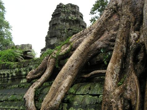 Ruins at Angkor, Cambodia. 2006