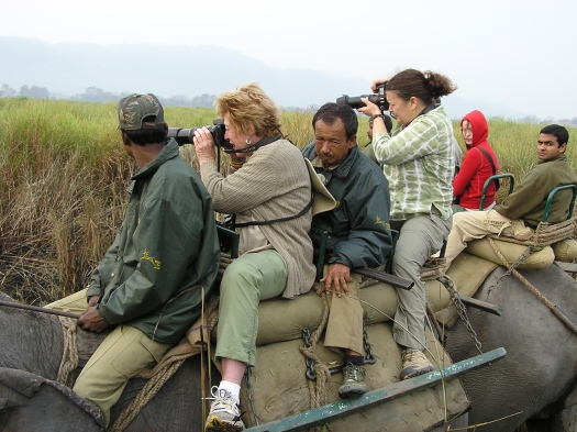 Tourists on elephant back, Kaziranga National Park, India. 2007