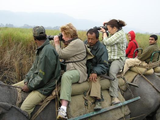 Tourists on elephant back, Kaziranga National Park, India. 2007