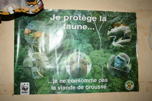 """""""I protect wildlife. I don't eat bushmeat."""""""