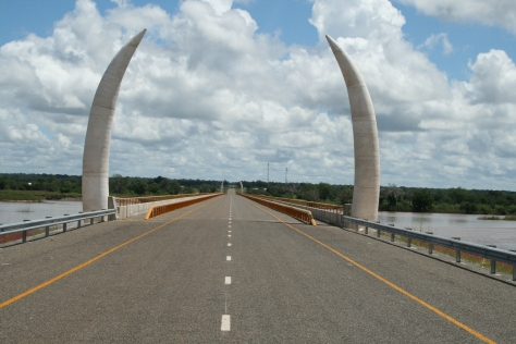Large tusks over Unity Bridge. Tanzania/Mozambique border.