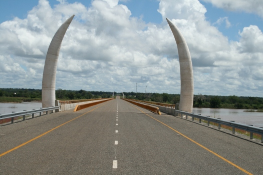 Large tusks over Unity Bridge. Tanzania/Mozambique border.