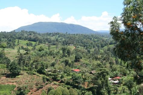 Foothills of Mt. Kenya near Chogoria, Kenya.