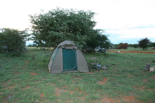 Home in the bush during rhino capture operation, Namibia